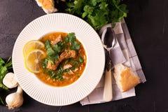 Jewish wedding and holyday Yemenite beef soup Marak Temani. Traditional jewish wedding and holyday Yemenite vegetable beef soup Marak Temani. Yom Kippur. Israeli Royalty Free Stock Image