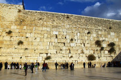 Jewish worshiper prays at the Wailing Wall Royalty Free Stock Photography