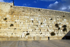 Jewish worshiper prays at the Wailing Wall Royalty Free Stock Photos