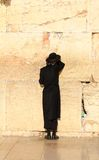 Jews pray at the Western Wall in Jerusalem Royalty Free Stock Image