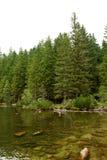 Jezero de Cerne (lac noir) Photographie stock libre de droits