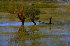 Jezero de Skadarsko - Montenegro Foto de archivo