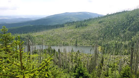 Jezero del né del ¡ di PleÅ Immagine Stock