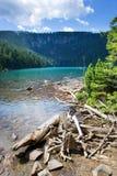 Jezero noir glaciaire de Cerne de lac, montagnes de Sumava, région de Bohème du sud, République Tchèque Photo stock