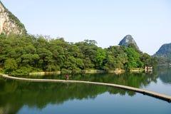 jezior drzewa Zdjęcia Stock