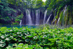 jezior park narodowy plitvice siklawy Zdjęcie Royalty Free
