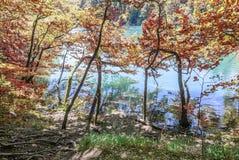 jezior park narodowy plitvice siklawy Chorwacja Zdjęcie Royalty Free