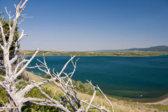 jezior park narodowy waterton Fotografia Royalty Free