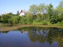 jeziora lustro Zdjęcia Royalty Free