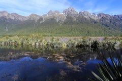 Jeziora lustro Fotografia Stock