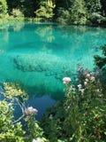 jeziora plitvice Zdjęcie Royalty Free