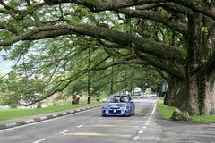 jeziora Taiping ogrody Obraz Royalty Free