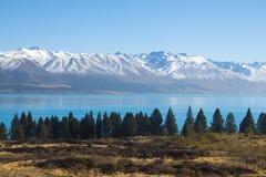JEZIORA TEKAPO POŁUDNIOWA wyspa NEWZEALAND Zdjęcie Stock