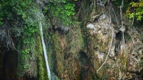 Jeziora z siklawą w Chorwacja, Europa Lokacja: Plitvice, parka narodowego Plitvicka jezera zbiory