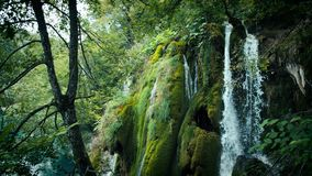 Jeziora z siklawą w Chorwacja Lokacja: Plitvice, parka narodowego Plitvicka jezera zbiory wideo