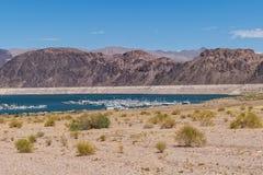 Jeziorna dwójniaka Nevada linia brzegowa obrazy royalty free