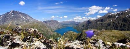 jeziorna halna panorama Zdjęcie Royalty Free