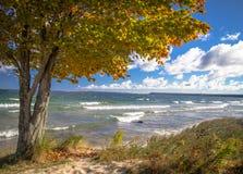 Jeziorna Wyższa jesień Obrazy Stock