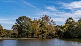 Jeziorni drzewa i niebo fotografia royalty free