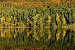 Jeziorni odbicia spadku ulistnienie Kolorowy jesieni ulistnienie ciska swój odbicie na spokojnej wodzie Obrazy Stock