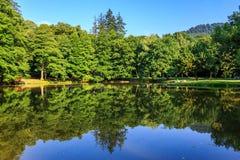 Jeziorni odbicia w miasto parku horyzontalnym Obraz Royalty Free