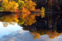 jeziorni upadku refleksje sceny drzewa Obraz Royalty Free
