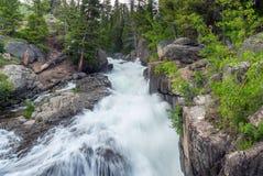 Jeziorni zatoczka spadki, Wyoming, usa obraz royalty free