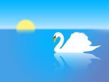 jeziorny łabędź Zdjęcie Royalty Free