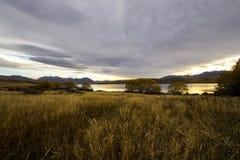 Jeziorny Alexandrina Nowa Zelandia Obrazy Stock