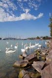 Jeziorny Balaton, Węgry obrazy stock