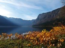 Jeziorny Bohinj w jesieni, Slovenia Zdjęcia Royalty Free