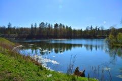Jeziorny Chernoye Gatchina petersburg Rosji st Zdjęcie Royalty Free