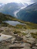 Jeziorny Cheserys i lodowiec Argentière Obrazy Royalty Free