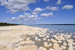 Jeziorny Cliffon fotografia stock