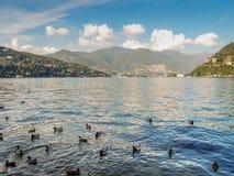 Jeziorny Como Zdjęcie Royalty Free