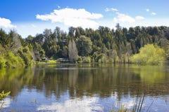jeziorny domu brzeg Fotografia Royalty Free