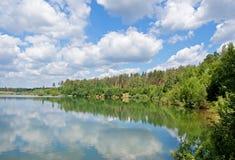 jeziorny drewno Zdjęcie Royalty Free