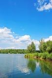 jeziorny drewno Fotografia Royalty Free