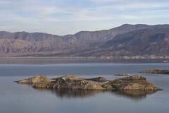 jeziorny dwójniak zdjęcia royalty free