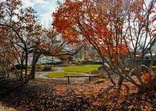 Jeziorny George Nowy York Fotografia Stock