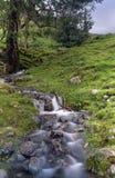 Jeziorny Gromadzki Halny strumień Zdjęcia Stock