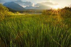 jeziorny halny Slovakia Strbske pleso europejczycy obraz royalty free