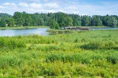 Jeziorny i stary kasztel zdjęcie royalty free