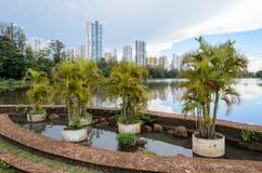 Jeziorny Igapo w Londrina Obraz Stock