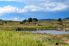 Jeziorny Jindabyne foreshore w Australia zdjęcia royalty free
