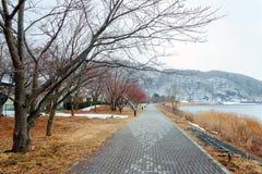 Jeziorny Kawaguchiko Zdjęcia Stock