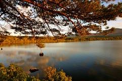 Jeziorny Killarney Zdjęcia Royalty Free