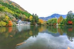 Jeziorny Kinrinko w Yufuin, Kyushu, Japonia Obraz Stock