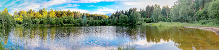 Jeziorny las fotografia stock