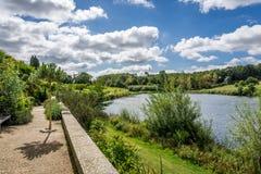 Jeziorny lato krajobraz Zdjęcie Royalty Free